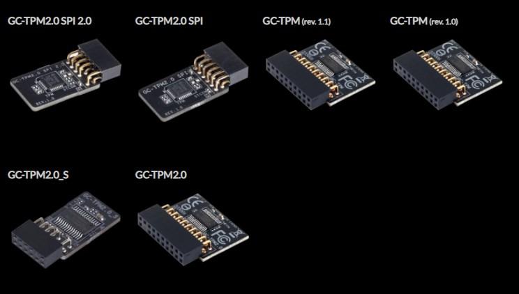 Qué es TPM 2.0 chips diferentes modelos